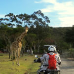 Big 5 Safari by Motorcycle