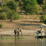Chobe-Safari-by-Boat