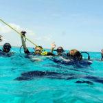 Diving Zanzibar
