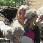 Ostrich-Farm-Visit