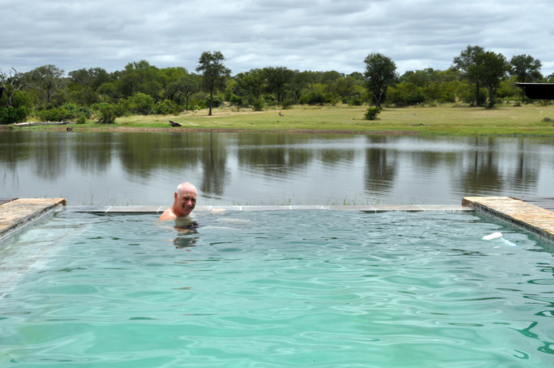 Pool with a view of Kruger