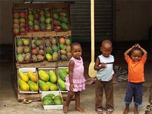 Fresh-mangos