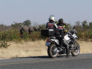 Motorcycle-tour-elephants