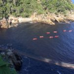 Storms-River-Mouth-Suspension